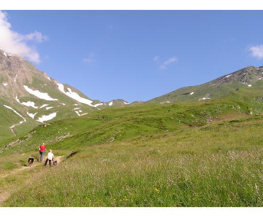 Bis in die Senke am Horizont (Niedertauern) mussten wir noch; dort lag die Hagener Hütte.