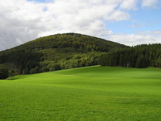 """Von """"Blinker II"""" der Blick zum Wilzenberg, das letzte Ziel des heutigen Tages."""