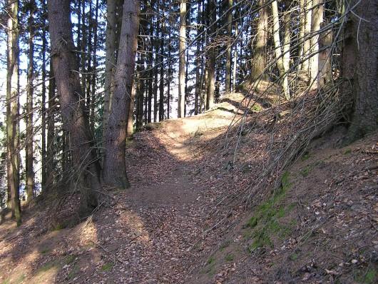 Naturbelassenen Pfade zeichnetetn diesen tollen Wanderweg auch aus.